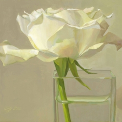 AM-Jespersen-rose-is-a-rose-2012