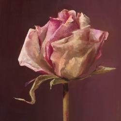 El-Muerte-de-Una-Rosa-10-
